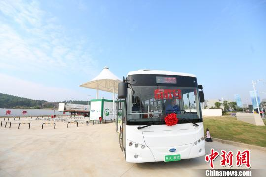 图为,武汉首批氢燃料电池动力公交车上路运营 徐金波 摄